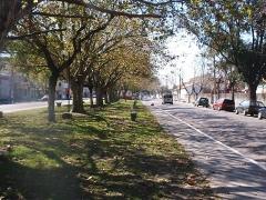Av. Buarque de Macedo